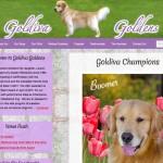 Goldiva Goldens